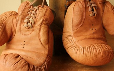 Light Brown Boxing Gloves